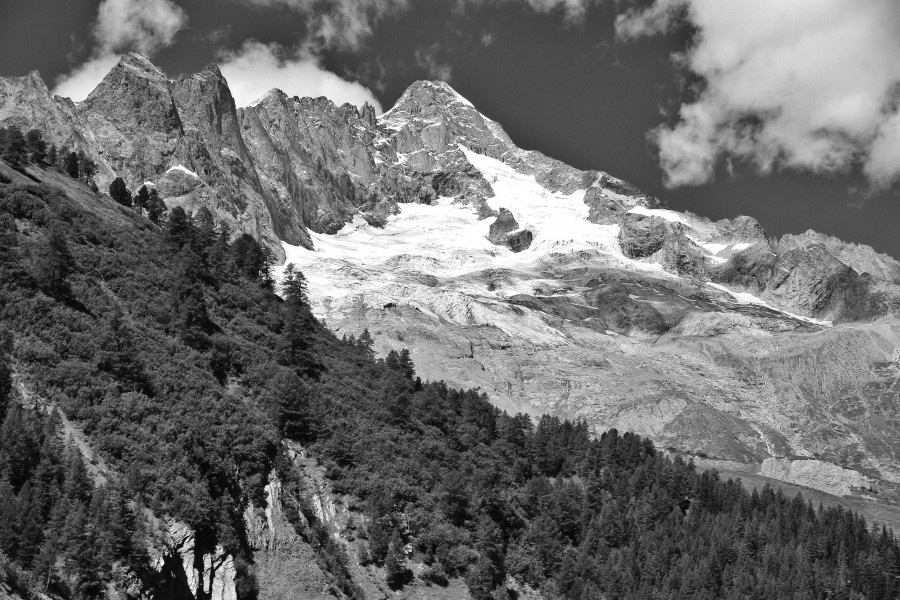 Mont Dolent from Ferret, 2010 August, bw