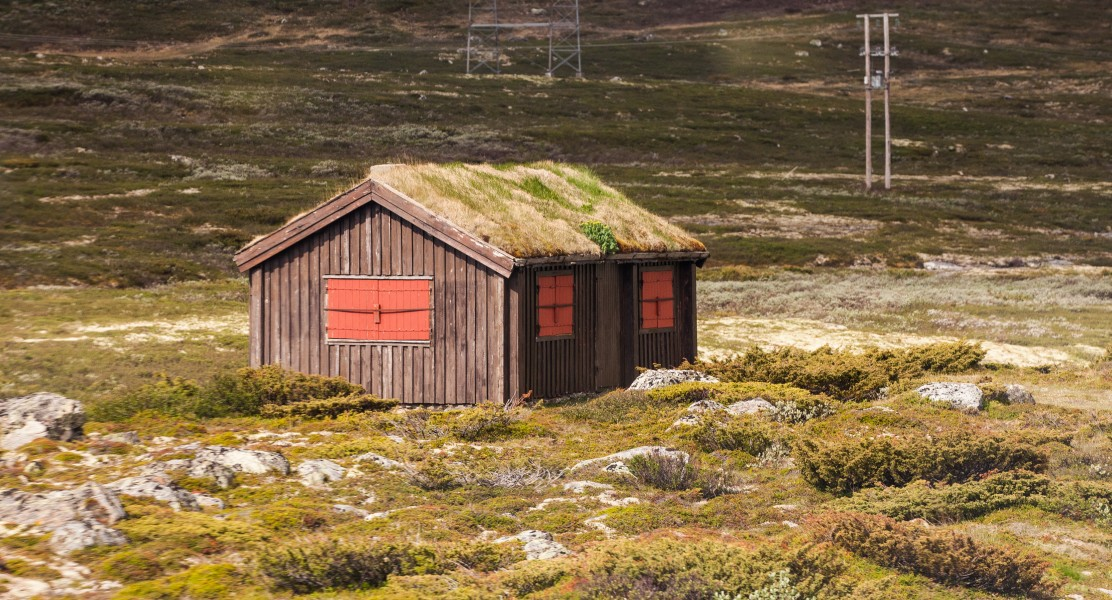 a hut with grass on the roof in Norway, June 2014, picture 9