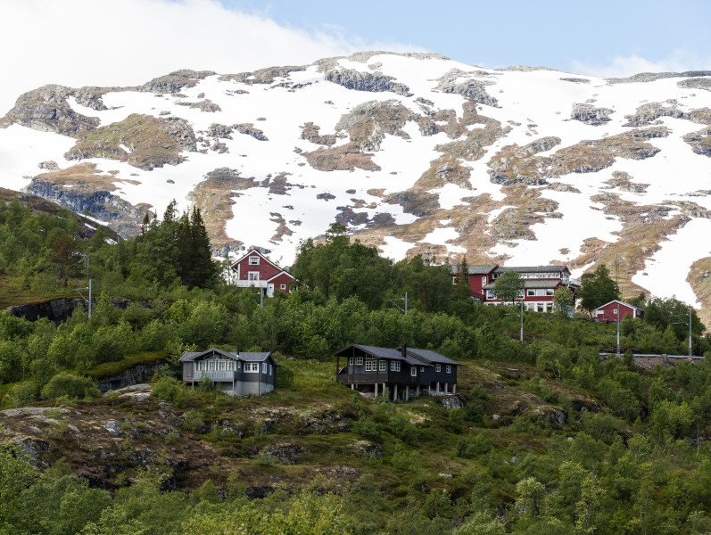 wooden houses in Norway, near Flåm, June 2014, picture 49