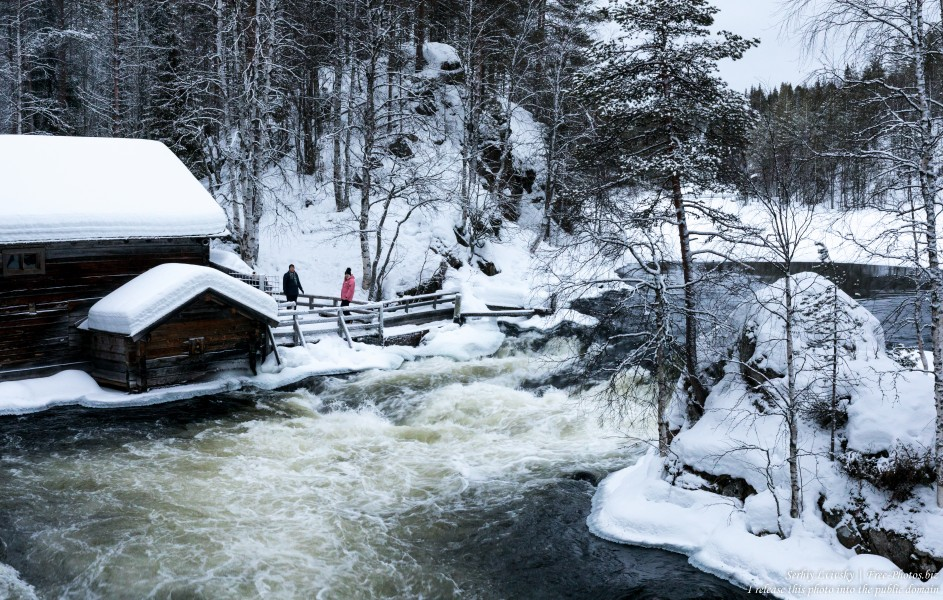 Oulanka, Finland, photographed in January 2020 by Serhiy Lvivsky, picture 1