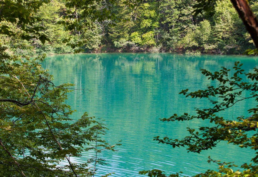 Plitvice Lakes, Croatia, July 2014, picture 1