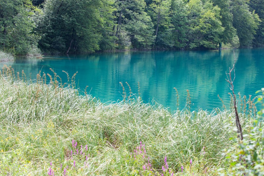 Plitvice Lakes, Croatia, July 2014, picture 8