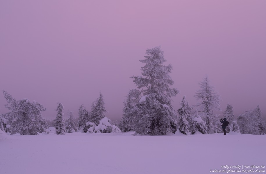 Riisitunturi, Finland, photographed in January 2020 by Serhiy Lvivsky, picture 11