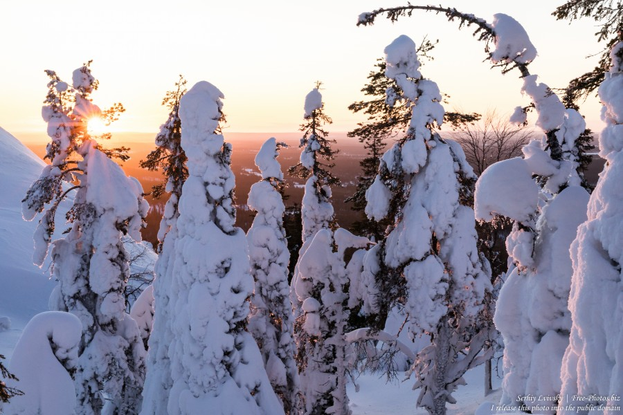 Ruka, Finland, photographed in January 2020 by Serhiy Lvivsky, picture 4