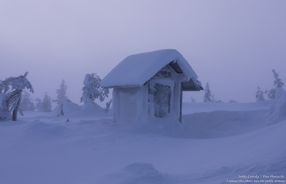 Sallatunturi, Finland, photographed in January 2020 by Serhiy Lvivsky, picture 5