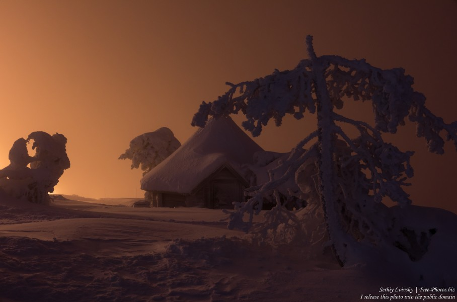 Sallatunturi, Finland, photographed in January 2020 by Serhiy Lvivsky, picture 22