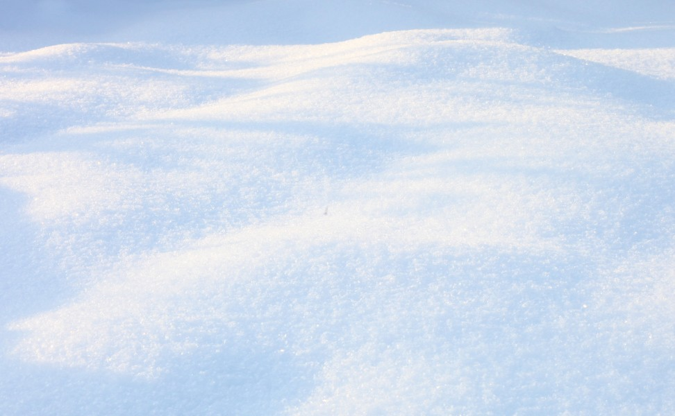 God's creation: snowy landscape, December 2012, picture 2