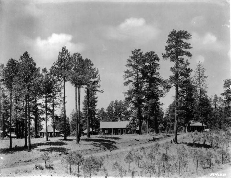 Southwestern Forest Experiment Station - 1924 (5375516041)