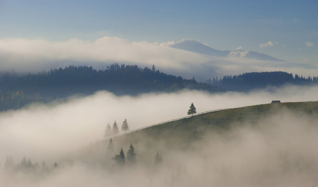 Carpathian mountains in Ukraine, Europe