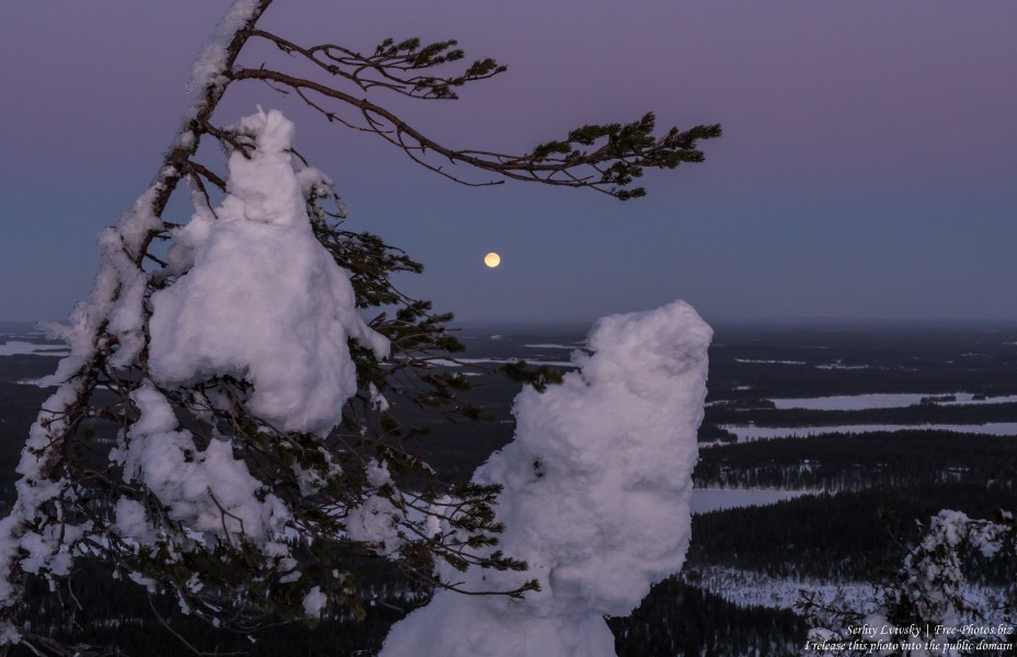 Valtavaara, Finland, photographed in January 2020 by Serhiy Lvivsky, picture 1