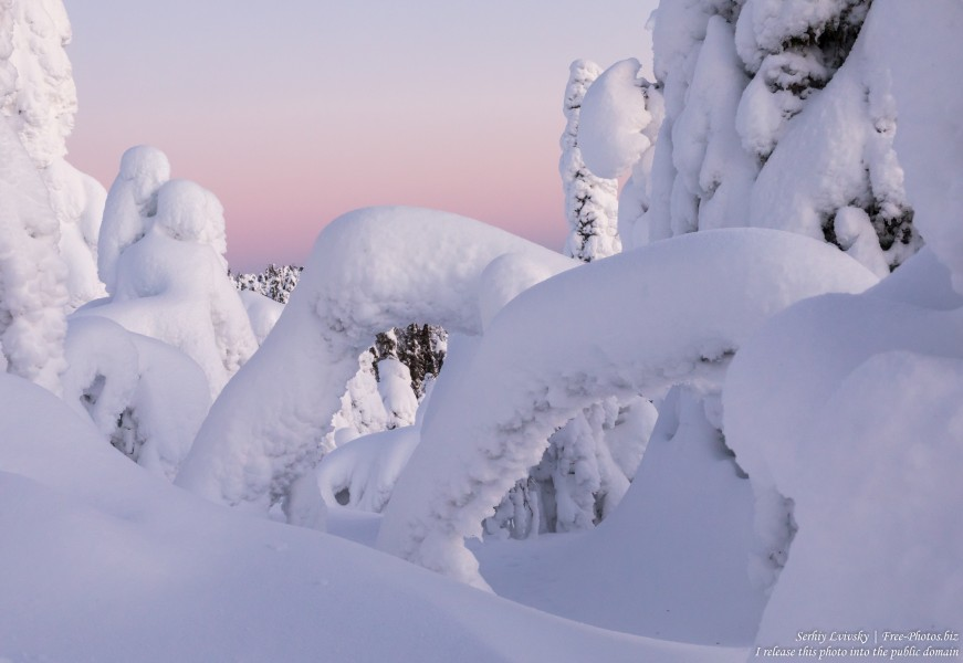 Valtavaara, Finland, photographed in January 2020 by Serhiy Lvivsky, picture 5