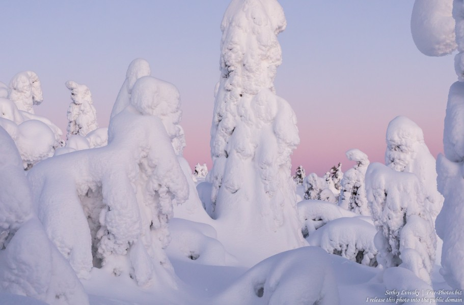 Valtavaara, Finland, photographed in January 2020 by Serhiy Lvivsky, picture 6
