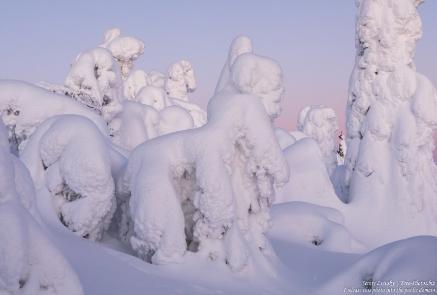 Valtavaara, Finland, photographed in January 2020 by Serhiy Lvivsky, picture 7
