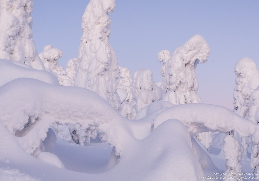 Valtavaara, Finland, photographed in January 2020 by Serhiy Lvivsky, picture 8