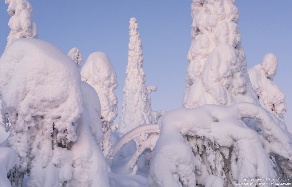 Valtavaara, Finland, photographed in January 2020 by Serhiy Lvivsky, picture 9