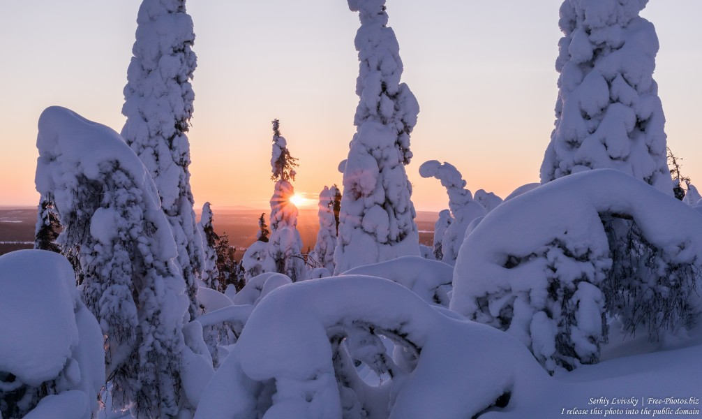 Valtavaara, Finland, photographed in January 2020 by Serhiy Lvivsky, picture 11