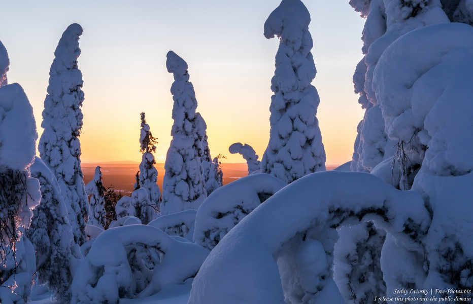 Valtavaara, Finland, photographed in January 2020 by Serhiy Lvivsky, picture 15