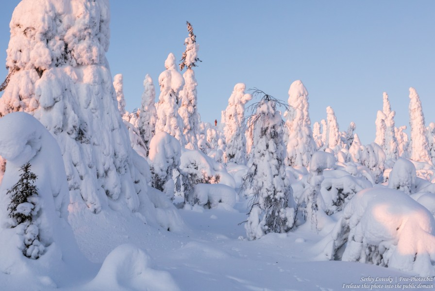 Valtavaara, Finland, photographed in January 2020 by Serhiy Lvivsky, picture 17