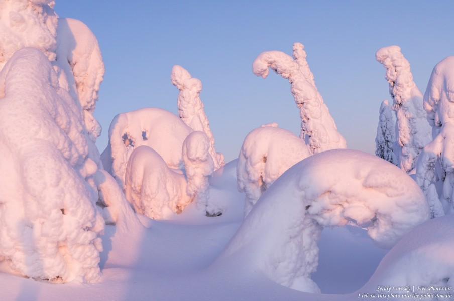 Valtavaara, Finland, photographed in January 2020 by Serhiy Lvivsky, picture 20