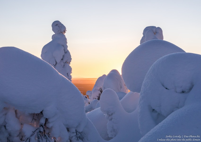 Valtavaara, Finland, photographed in January 2020 by Serhiy Lvivsky, picture 21
