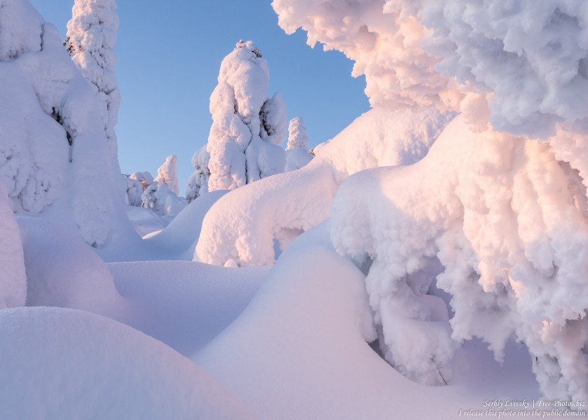 Valtavaara, Finland, photographed in January 2020 by Serhiy Lvivsky, picture 25