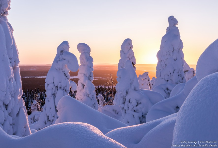 Valtavaara, Finland, photographed in January 2020 by Serhiy Lvivsky, picture 26
