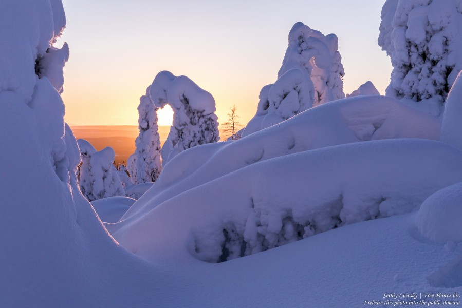 Valtavaara, Finland, photographed in January 2020 by Serhiy Lvivsky, picture 27