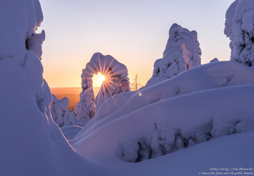 Valtavaara, Finland, photographed in January 2020 by Serhiy Lvivsky, picture 28