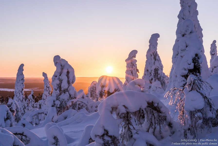Valtavaara, Finland, photographed in January 2020 by Serhiy Lvivsky, picture 29