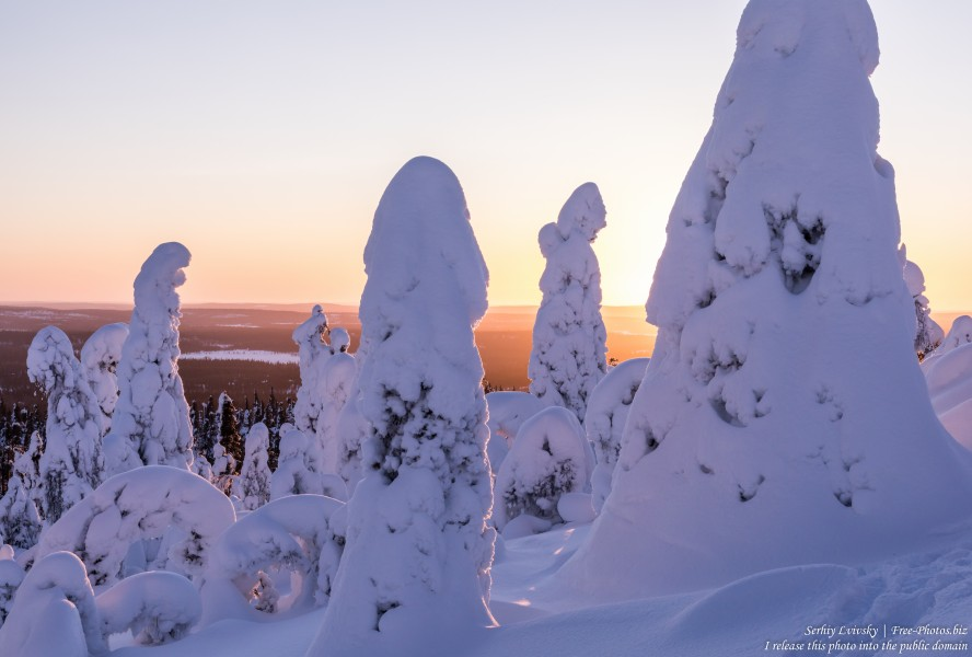 Valtavaara, Finland, photographed in January 2020 by Serhiy Lvivsky, picture 34