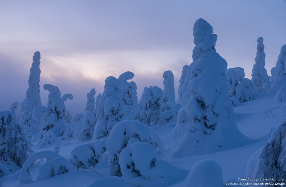 Valtavaara, Finland, photographed in January 2020 by Serhiy Lvivsky, picture 51
