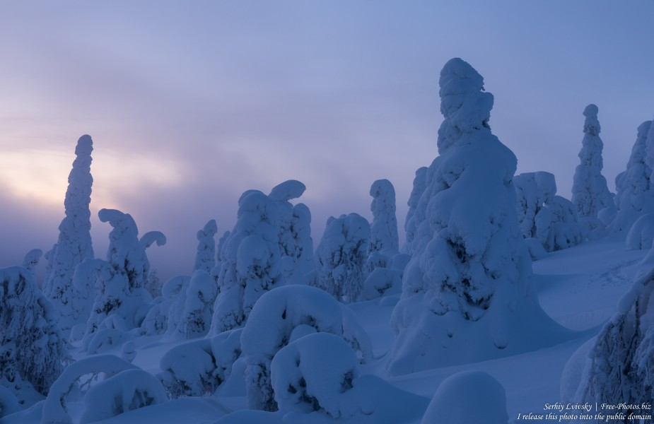 Valtavaara, Finland, photographed in January 2020 by Serhiy Lvivsky, picture 52