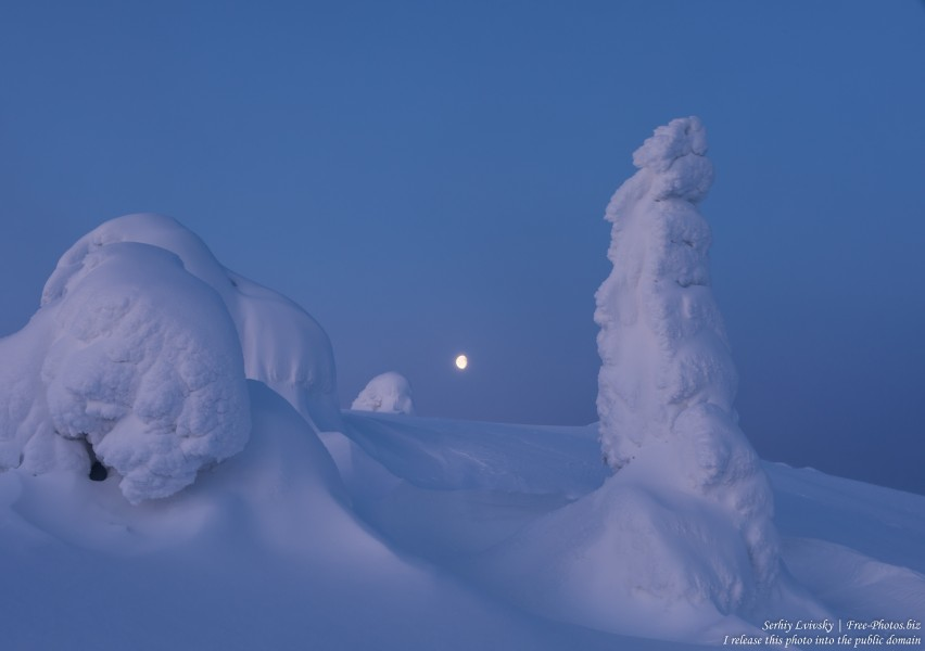 Valtavaara, Finland, photographed in January 2020 by Serhiy Lvivsky, picture 55