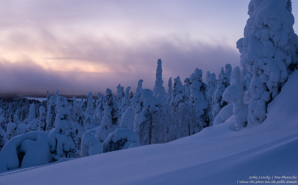 Valtavaara, Finland, photographed in January 2020 by Serhiy Lvivsky, picture 56