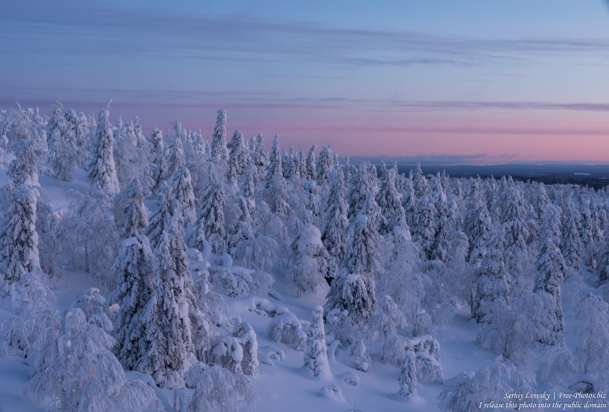 Valtavaara, Finland, photographed in January 2020 by Serhiy Lvivsky, picture 57