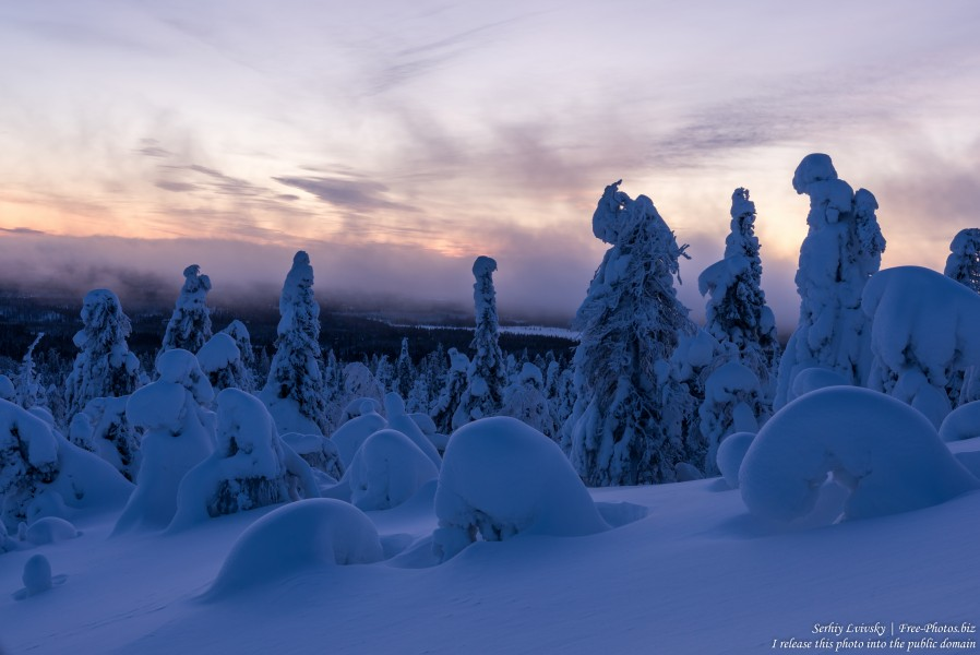 Valtavaara, Finland, photographed in January 2020 by Serhiy Lvivsky, picture 58