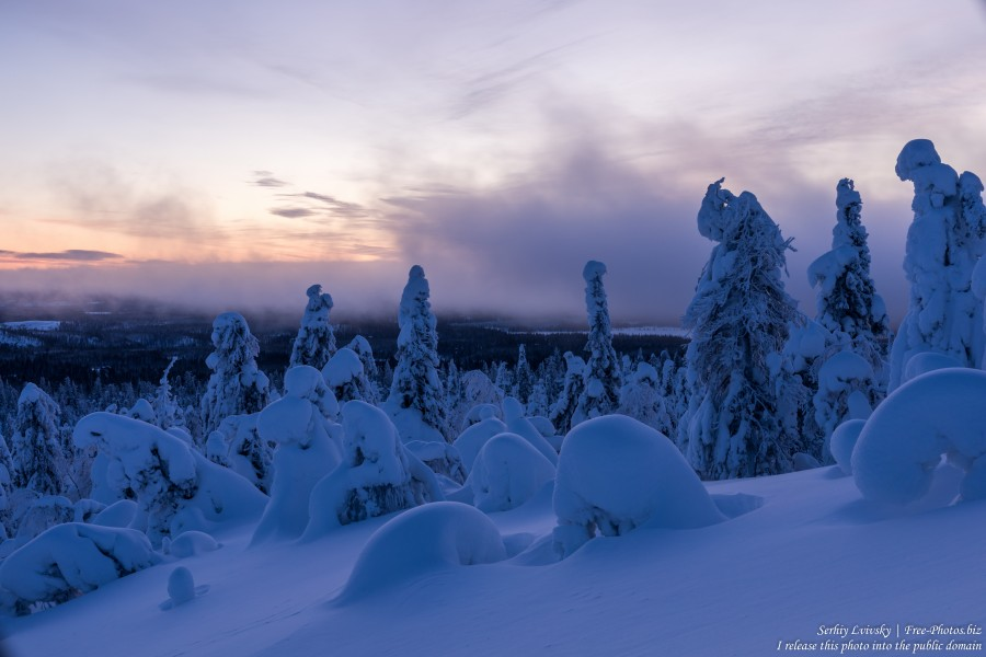 Valtavaara, Finland, photographed in January 2020 by Serhiy Lvivsky, picture 59