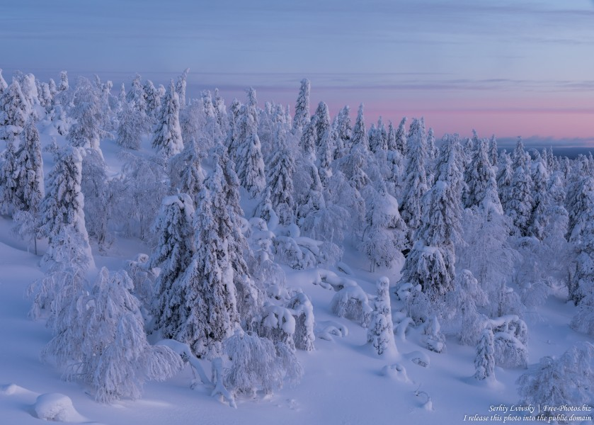 Valtavaara, Finland, photographed in January 2020 by Serhiy Lvivsky, picture 60