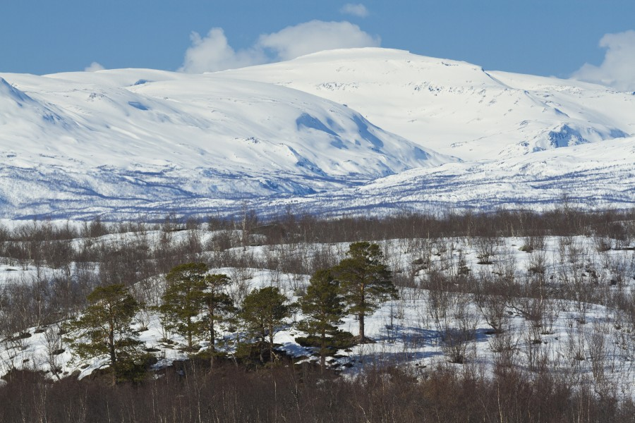 View to Riehppecohkka, Jalgesvárri and Sørdalen from Abisko, Norrbotten, Sweden, 2015 April