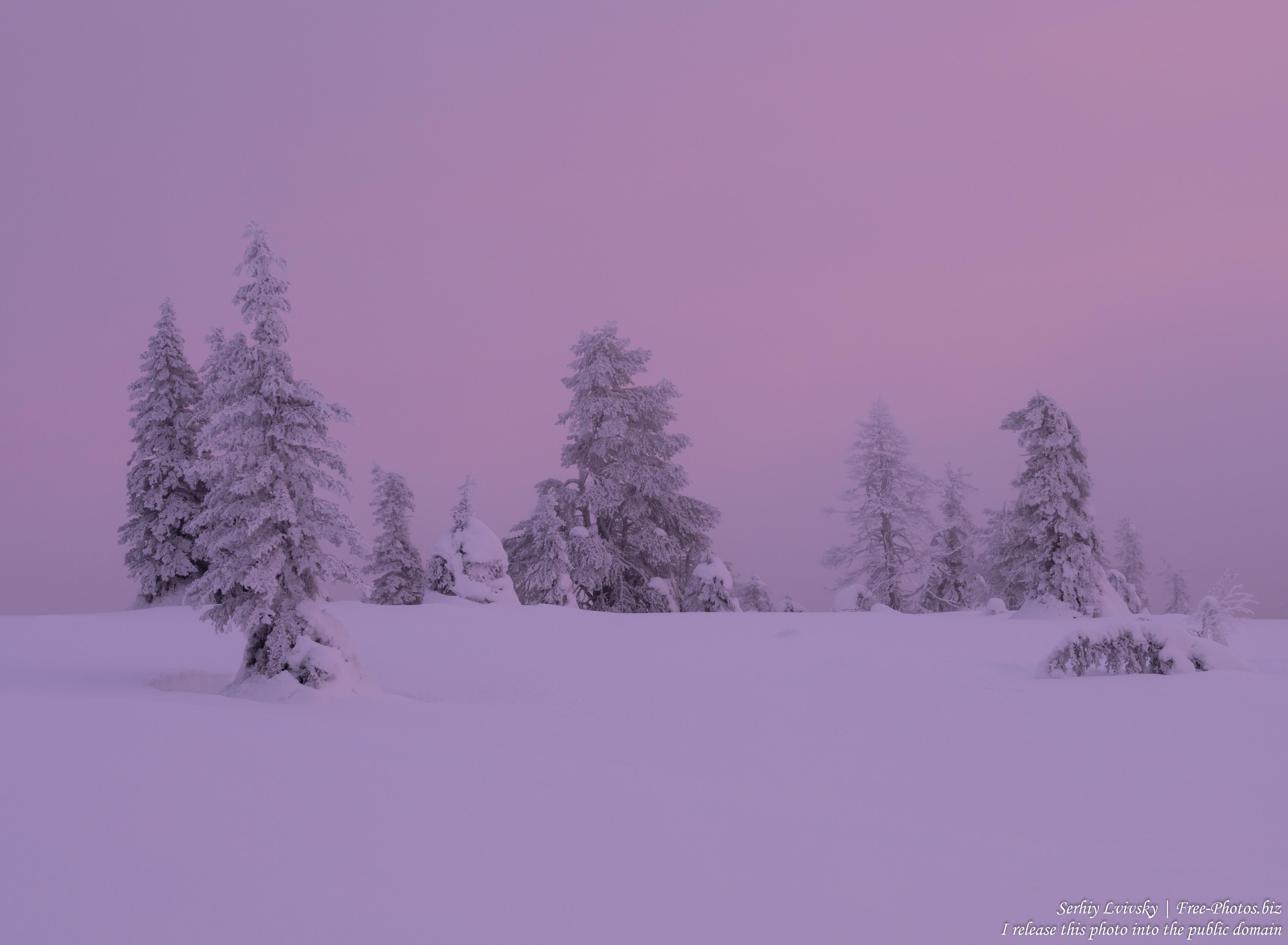 Riisitunturi, Finland, photographed in January 2020 by Serhiy Lvivsky, picture 9