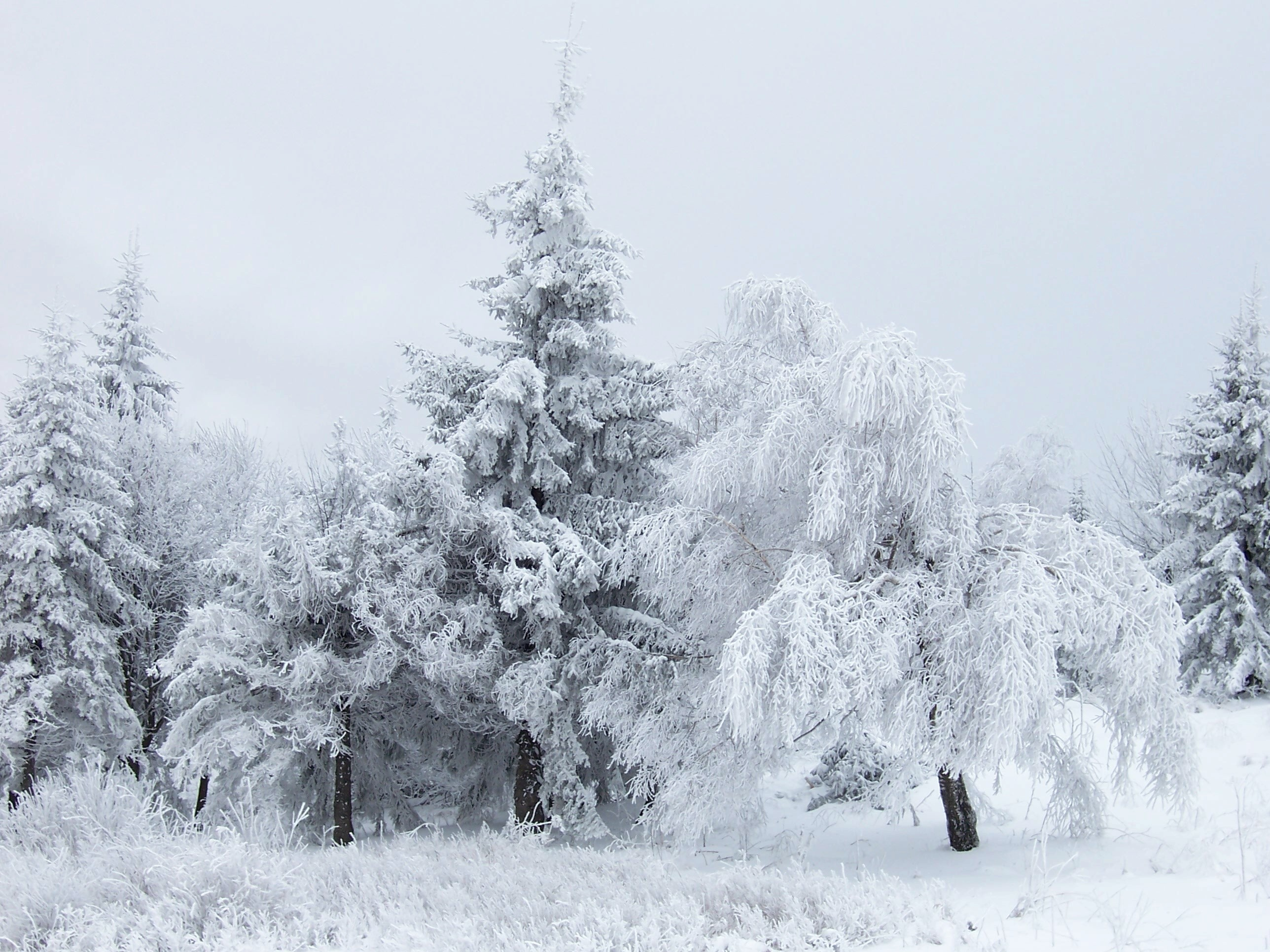 Snow Scene at Shipka Pass 3