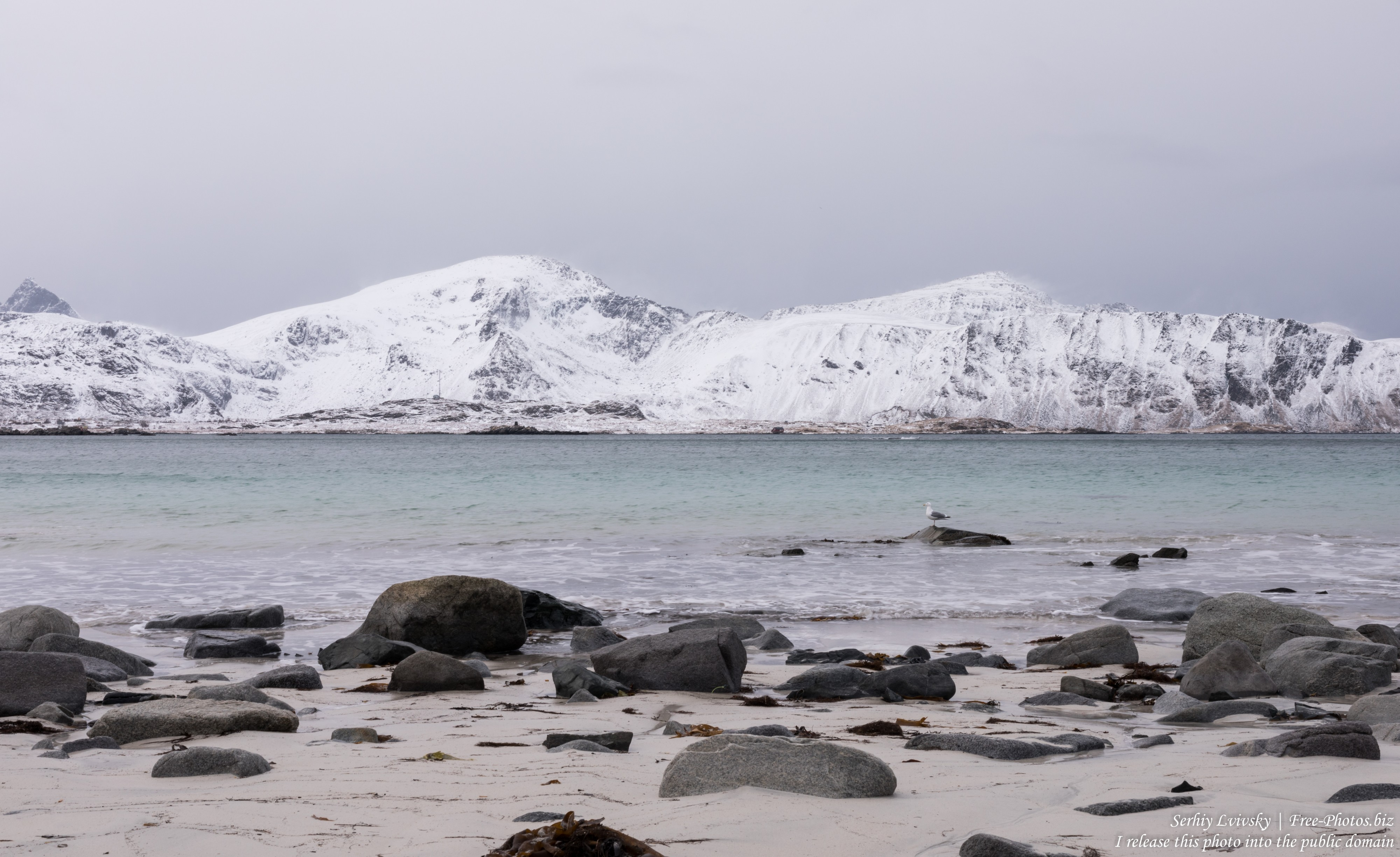 Ramberg beach, Norway, in February 2020, by Serhiy Lvivsky, picture 5