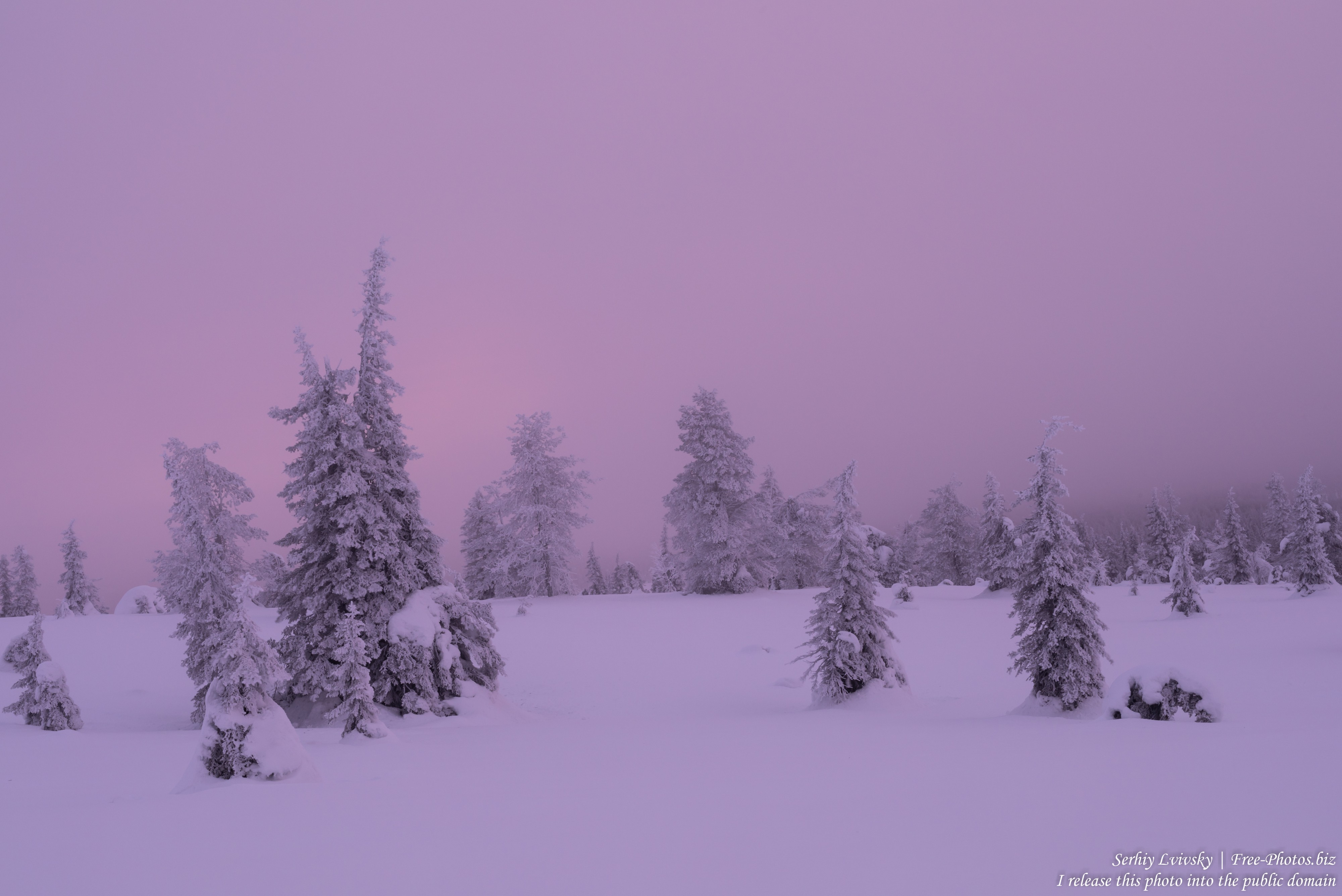 Riisitunturi, Finland, photographed in January 2020 by Serhiy Lvivsky, picture 8