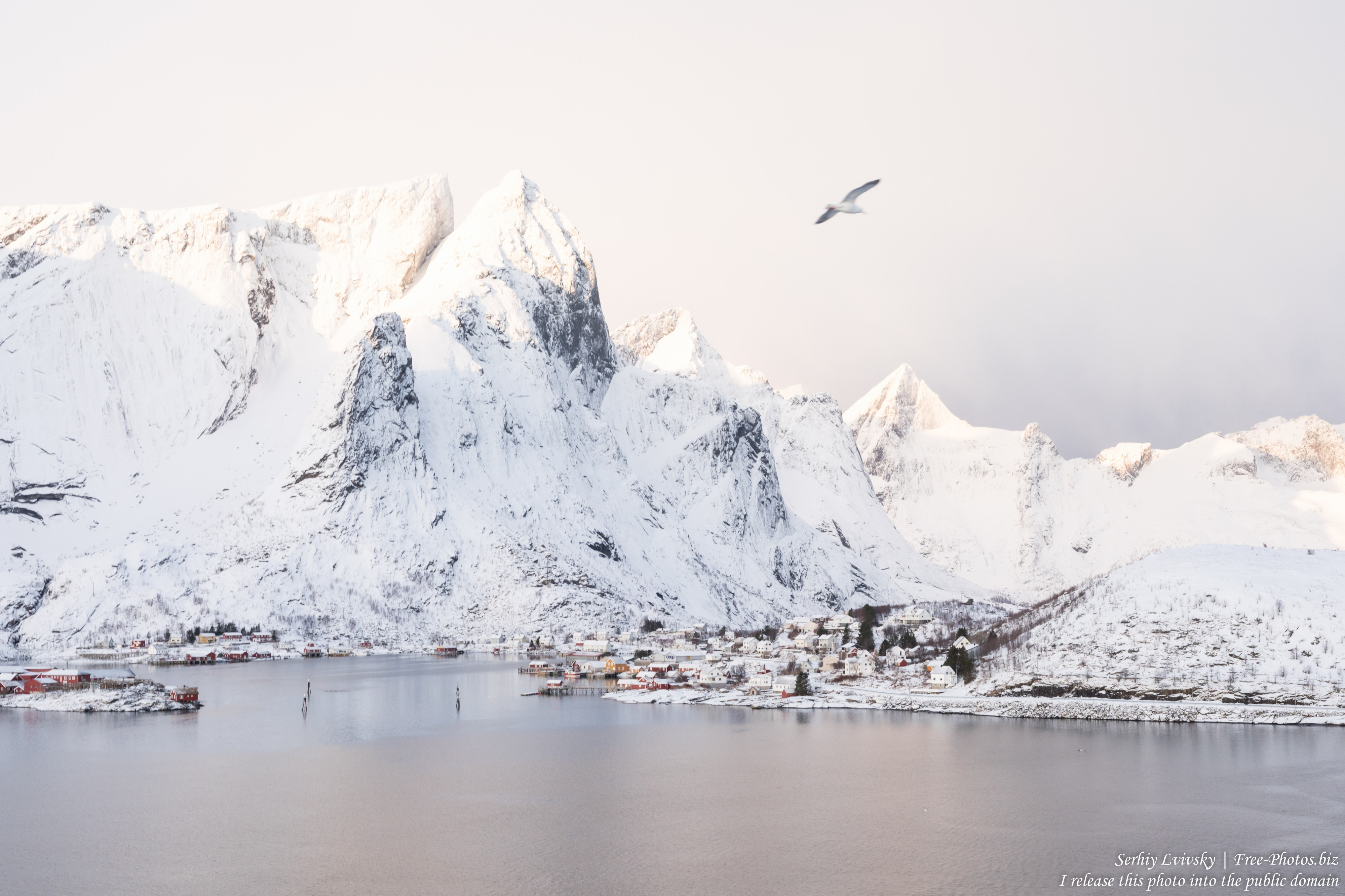 Sakrisoy and surroundings, Norway, in February 2020 by Serhiy Lvivsky, picture 25