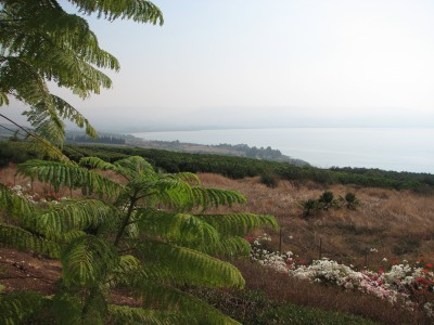 The Mount of Beatitudes, Israel, photo 11