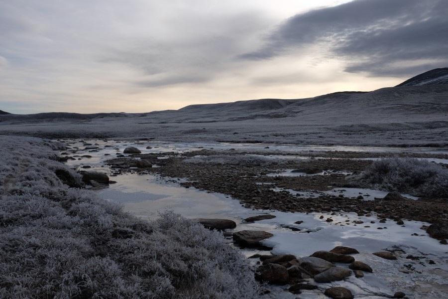Frozen ground in Stroplsjødalen valley in Dovrefjell National Park, Norway