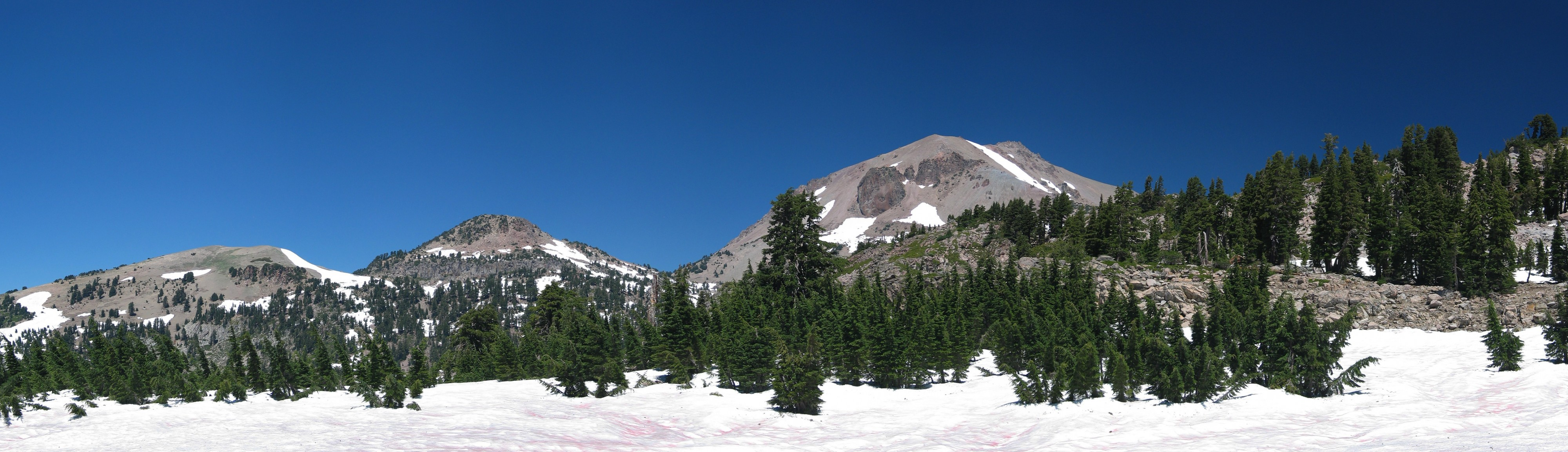 USA Lassen NP algae snow meadow CA