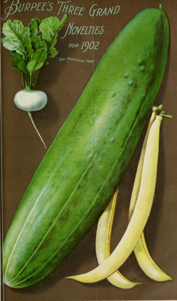 Burpee's 1902 farm annual - vegetable, flower and farm seeds (1902) (19941111824)