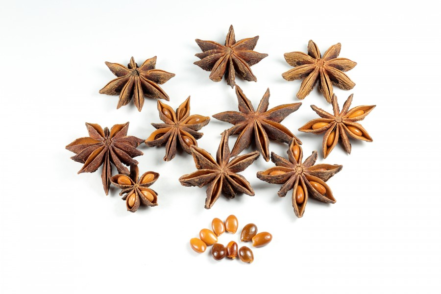 Dried Star Anise Fruit Seeds