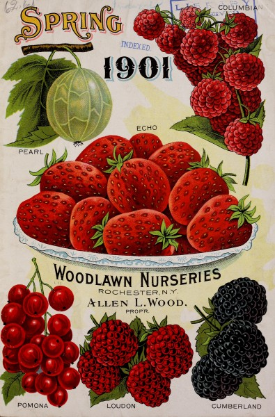 Woodlawn Nurseries Spring 1901 Catalog, front cover